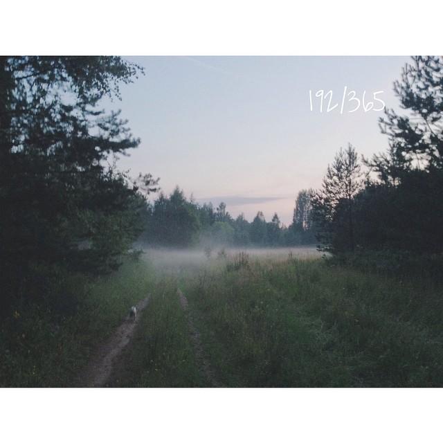 Как де дорого мне это место. Соня бежит через туман сообщать, что в лесу нашлась овечка. Удивляется как же туман от нее все время убегает. В воздухе запах трав и воды. Густой-густой. Плывешь в нем. И так тихо, так прекрасно. до_30  #туман