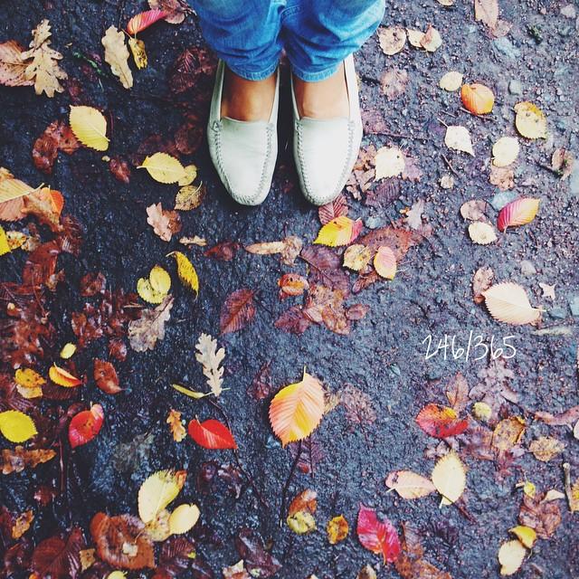 Ворвалась в осень:) до_30 #осень   #ногиходятпопланете