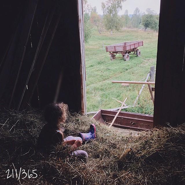 Разбегаешься и делаешь кувырок в сено!! Когда уровень сена на тебе начинает зашкаливать, бегом с горы и в озеро - Соня в восторге:))) а я детство вспоминаю. Тогда сено заготавливали в рулонах и мы играли в догонялки, прятки, а потом долго сидели и пели песни:) до_30 #лоскутноеодеялодетства    #хорошовдеревнелетом
